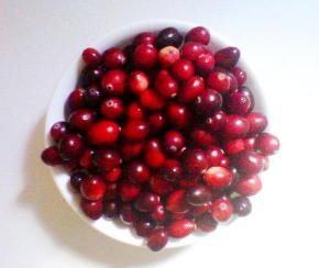 tasty tuesday: tangy orange cranberry sauce