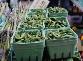 love the harvest: springvegetables